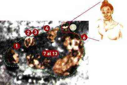 image038 O mistério da Virgem de Guadalupe