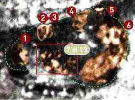 image040 O mistério da Virgem de Guadalupe