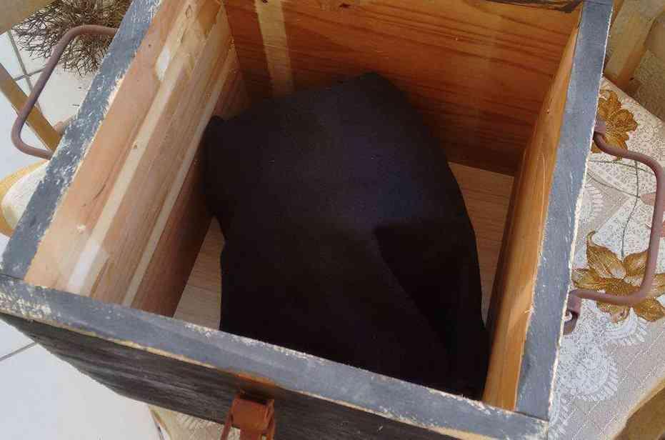 caixainterna As relíquias de Czernica