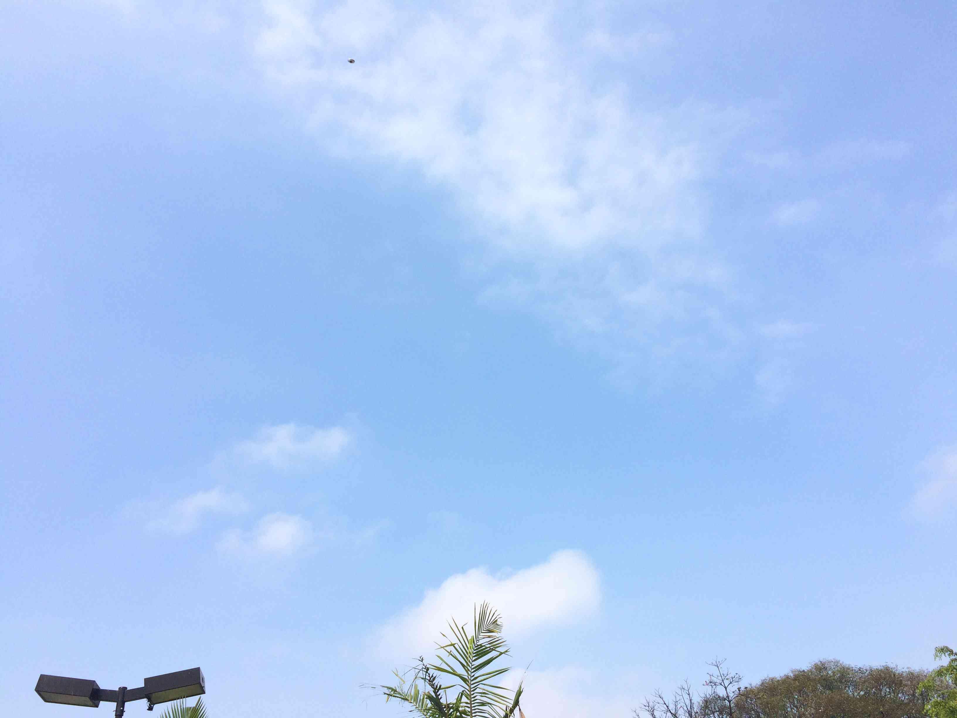 IMG 5880 Análise da fotografia de um Ufo