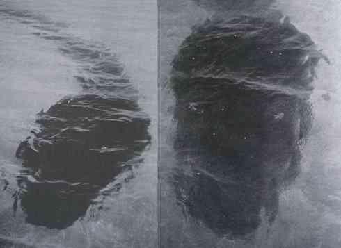 i 31030919da4e383ce2968d4fb83fcf13 Hook Island composite A criatura do fundo