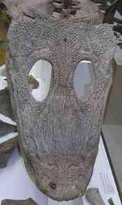 i e048dfdcc90659dfe5b241aecbceb6c4 mastodonsaur resized July 2008 A criatura do fundo
