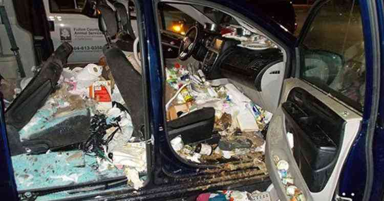 car Carro sujo: Você não vai acreditar no grau de imundície desse carro!