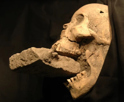 Vampire Grave Uncovered in Poland Vampire Burial 1 A caixa do Dr Van Helsing
