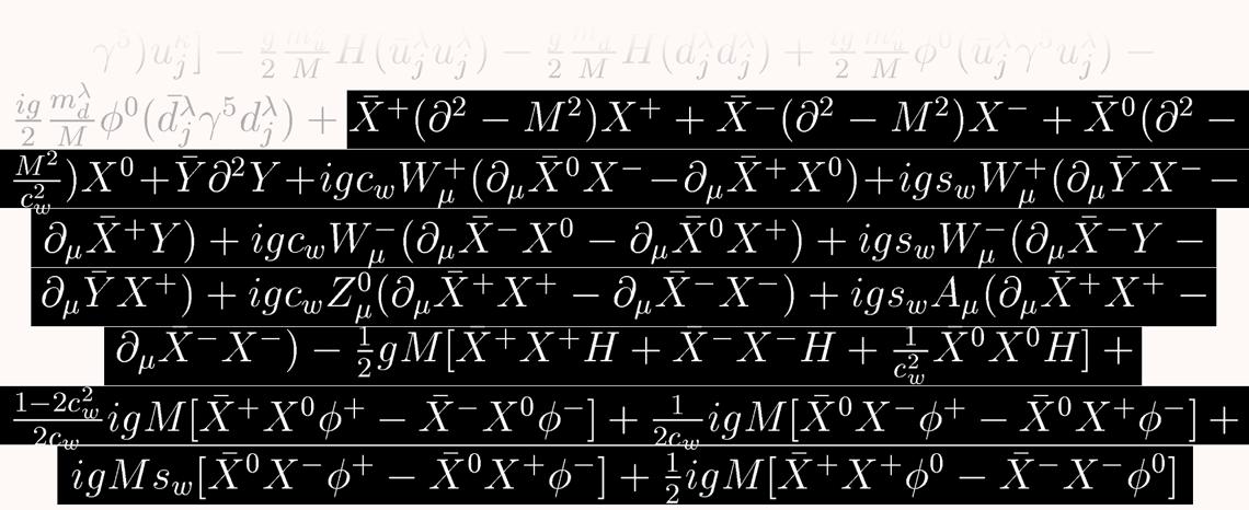 section 5 A equação mestra do Universo