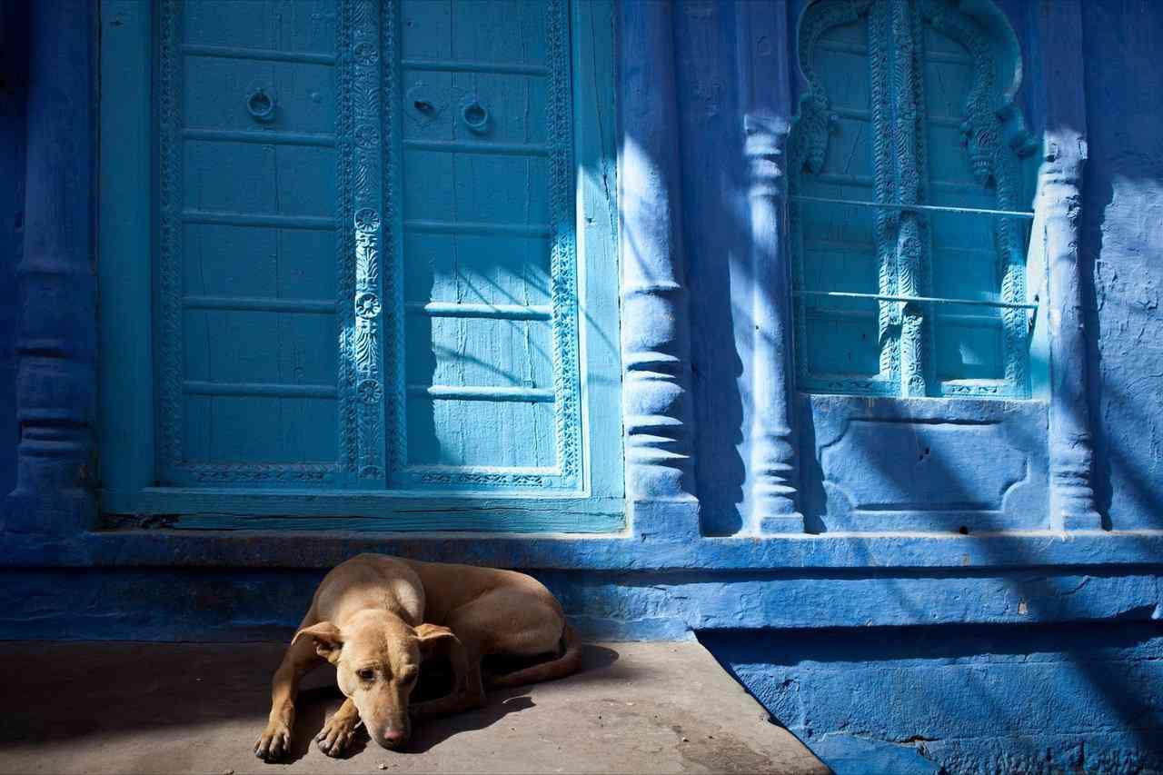 0 cb325 3945f7db orig A cidade azul da Índia