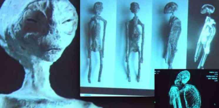 Momias extraterrestres de Perú no son falsas asegura científico2. Vídeo Investigadores independentes confirmam que a estranha múmia encontrada no deserto é de um extraterrestre. Será?
