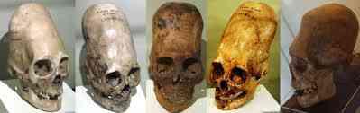 download 11 Investigadores independentes confirmam que a estranha múmia encontrada no deserto é de um extraterrestre. Será?