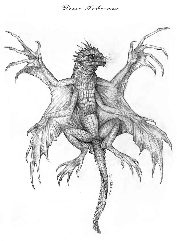 draco arboralis Ultra gump blaster mega pack ultimate post de monstros 4