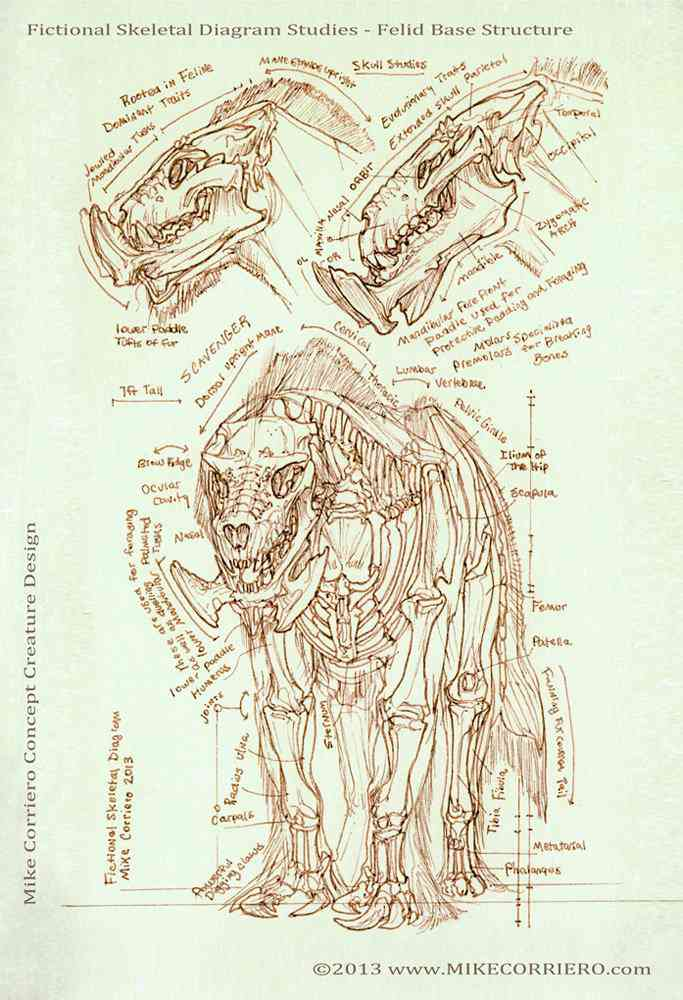 feline scavenger skeletal diagram mike corriero 2013 web Ultra gump blaster mega pack ultimate post de monstros 3