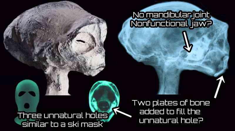 head 1 Investigadores independentes confirmam que a estranha múmia encontrada no deserto é de um extraterrestre. Será?