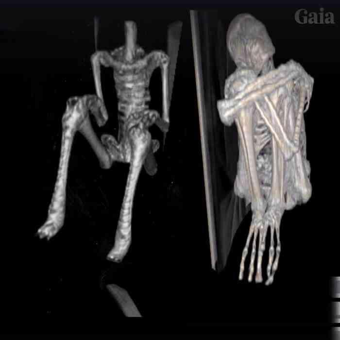 múmias nazca Investigadores independentes confirmam que a estranha múmia encontrada no deserto é de um extraterrestre. Será?