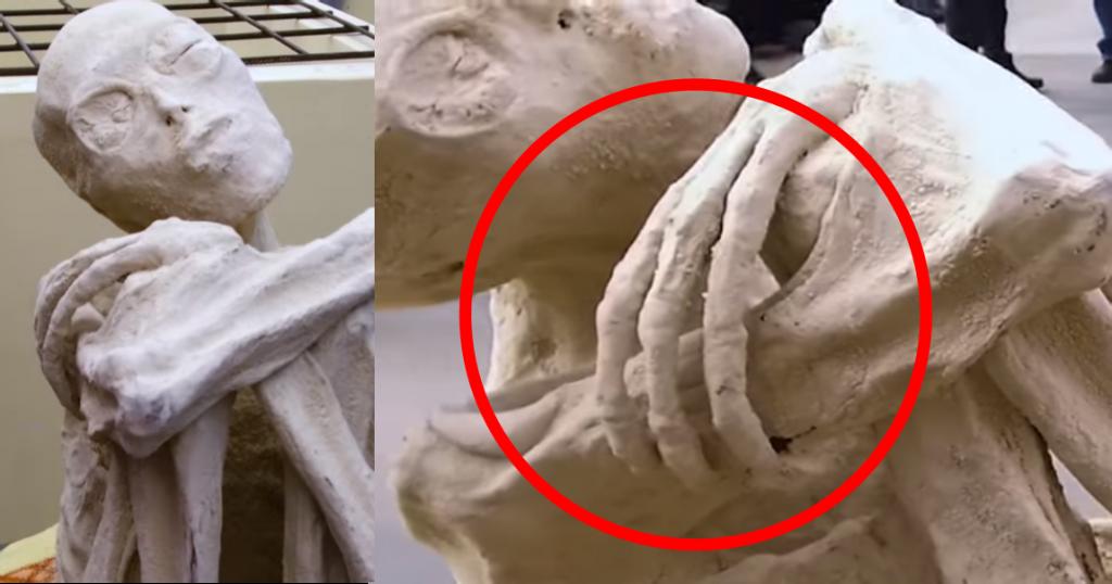 m3 1024x538 Investigadores independentes confirmam que a estranha múmia encontrada no deserto é de um extraterrestre. Será?