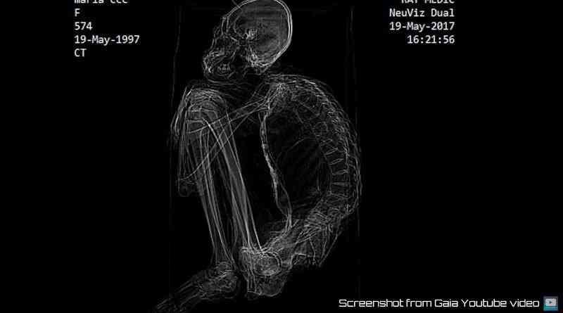 x ray maria Investigadores independentes confirmam que a estranha múmia encontrada no deserto é de um extraterrestre. Será?