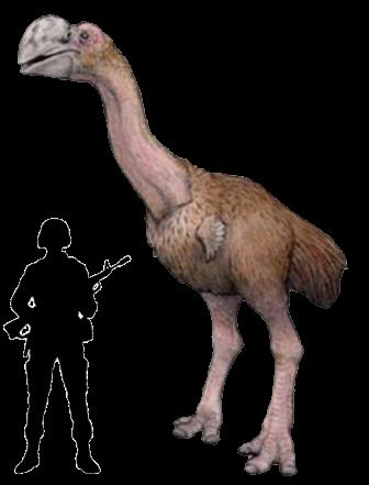 333787dromornisstirtoni Indio Gigante, o frango gigantesco