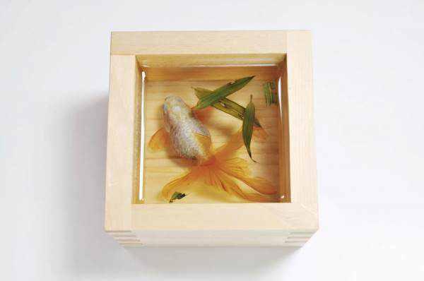 714906goldfish 3 600x398 Riusuke Fukaori, o criador de peixinhos