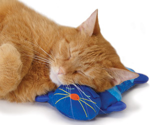 Almofada Quentinha Kitty Cuddle Pal - Petstages