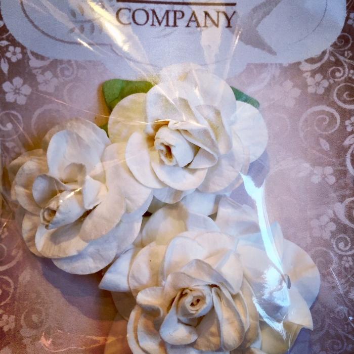 Rosas II Branca - Flores