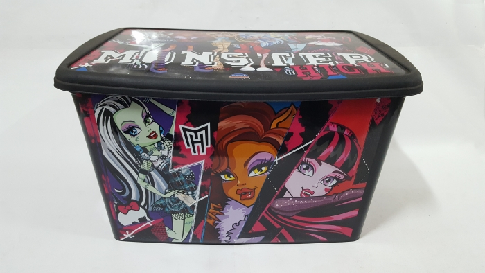 CAIXA DECORATIVA MONSTER HIGH