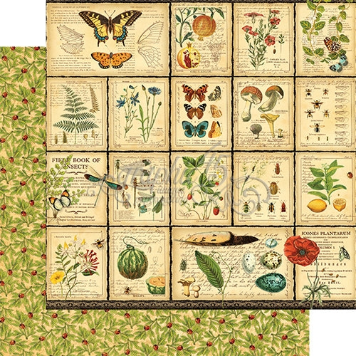 Papel Graphic 45 Nature - Diary of a Botanist