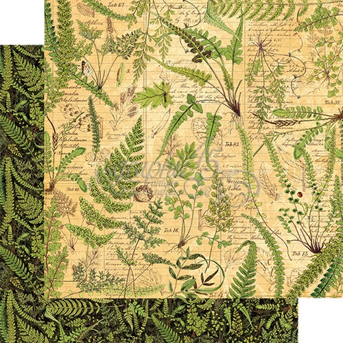 Papel Graphic 45 Nature - Verdant Woodlands