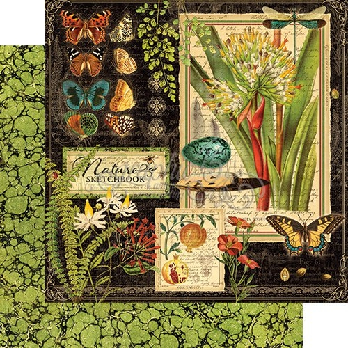 Papel Graphic 45 Nature - Sketchbook
