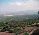 """Localizado na Espanha, denominado Ubeda, ou melhor, """"cerros de Ubeda"""", onde adiamos tudo que precisava ser resolvido urgentemente"""