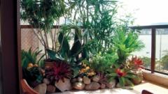 O cantinho pode ser feito aos poucos sem aplicação de muito dinheiro, escolhendo vasos, jardineiras e até painéis prontos que aglutinam as plantas