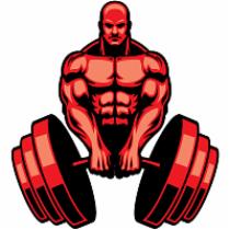 Ganhar Massa Muscular.Net