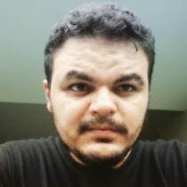Luiz Henrique Alves Ferreira