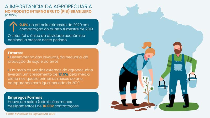 Importância da agropecuária no Brasil/ Crédito: Erica Passos