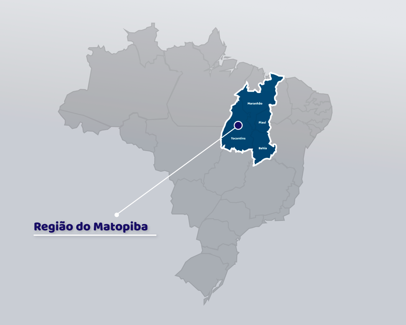 Imagem: Ítalo Novaes - Agência do Rádio Mais