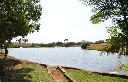 Foto: Governo de Goiás