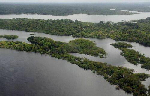Floresta amazônica. Foto: Agência Brasil