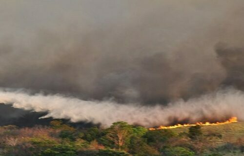 Foto: Governo do Mato Grosso do Sul