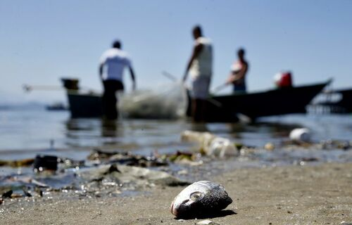 Pesca. Foto: Agência Brasil.