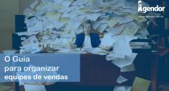 Organizar a equipe de vendas é um grande desafio para empreendedores e gestores.