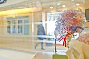 neurovendas