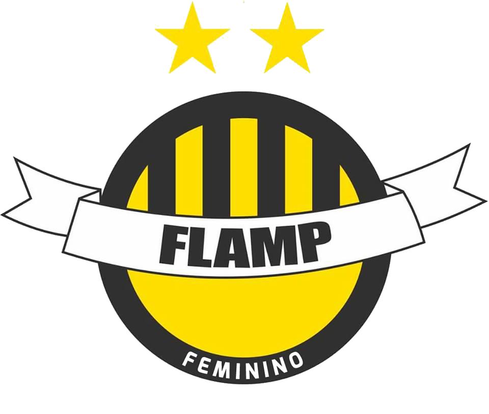 Flamp feminino png
