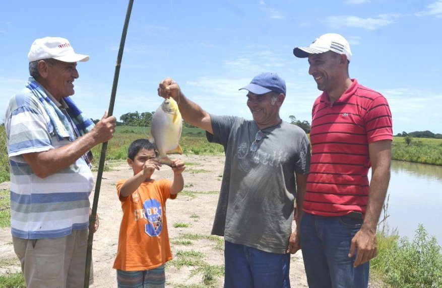Cr A De Pac Y Tilapia En Estanques En Finca Familiar Es
