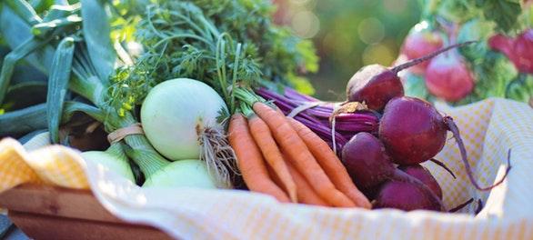 6 consejos para una alimentación saludable