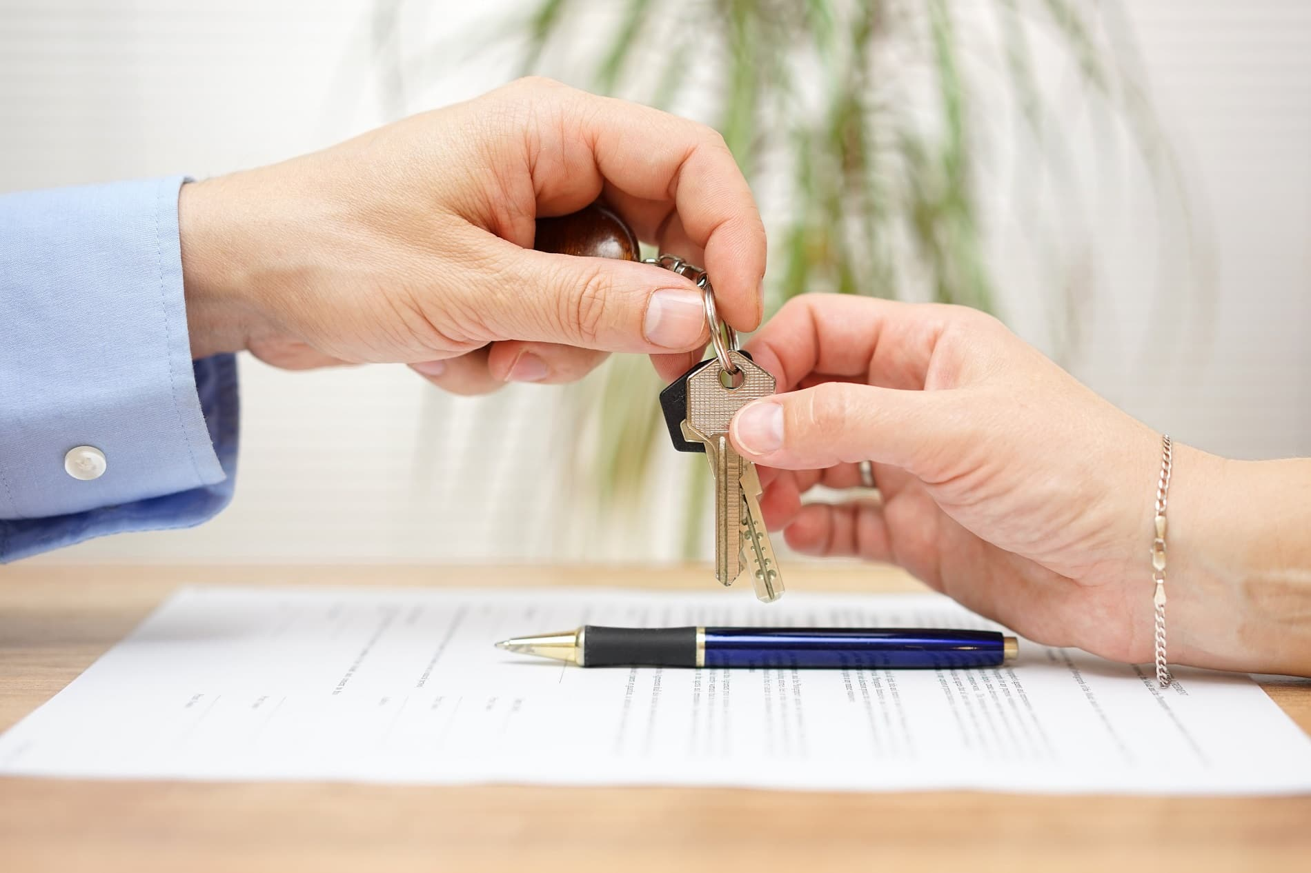 Nova lei do inquilinato: o que vai mudar na locação de imóveis – Banco dos Imóveis Parcerias Imobiliárias o número 1º em Parceria