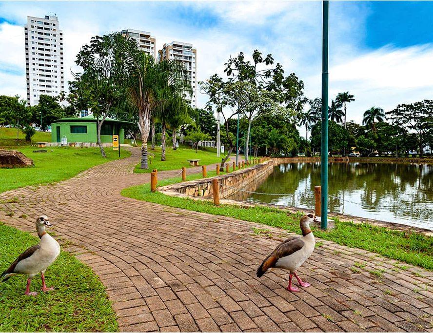 Conheça os parques mais famosos de Goiânia