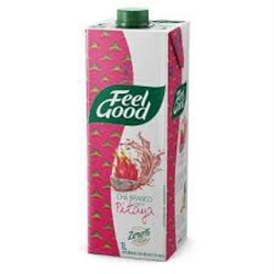 CHA BRANCO FEEL GOOD PITAYA 1l