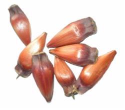 Pinhao Kilo