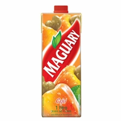 Nectar Maguary 1L Caju