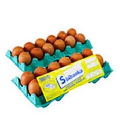 Ovos Shibaoka Grande Branco com 12