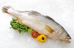Peixe Cong Pescada Do Sul Int kg
