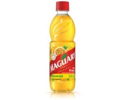 Suco Conc Maguary 500ml Laranja