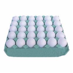 Ovos Modelo Grande Branco com 30